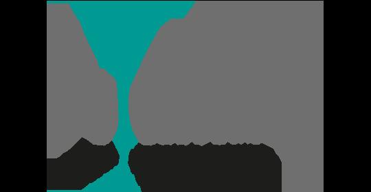 dutchking Logo
