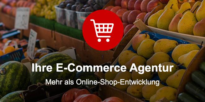 Ihre E-Commerce Agentur - Mehr als Online-Shop-Entwicklung